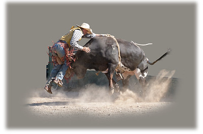 Bull Riding - Bulldozed by a Bull