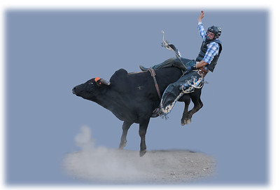 Bull Riding - Perilous Posterior Position