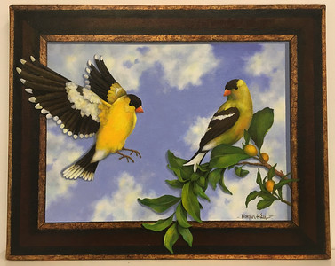 GOLDFINCHES IN THE SPRING