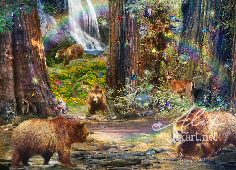 Bear Forest Magical