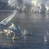 Firehole River Takeoff
