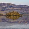 Flamingoes at Lake Natron in Tanania
