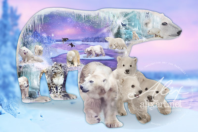 polar_bear_shape_bg