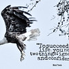 Bald Eagle with Mark Twain Quote
