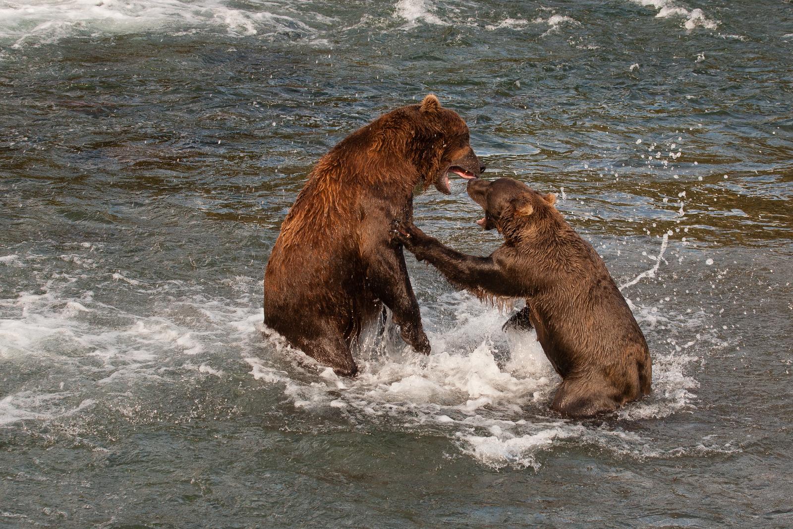Alaska, 2011