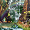 Redwood Land Waterfall  - Mountainlion Variation