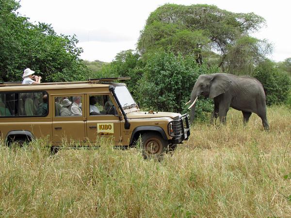 Land cruiser and elephant, Tarangire National Park, Tanzania, East Africa