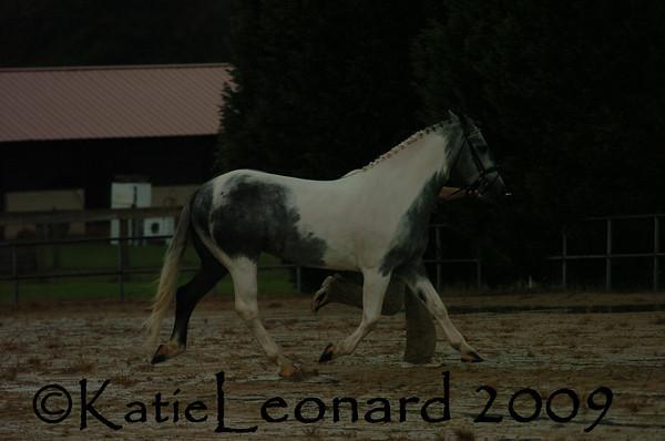 KAL_4780