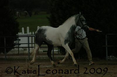 KAL_4804
