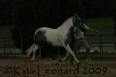 KAL_4800
