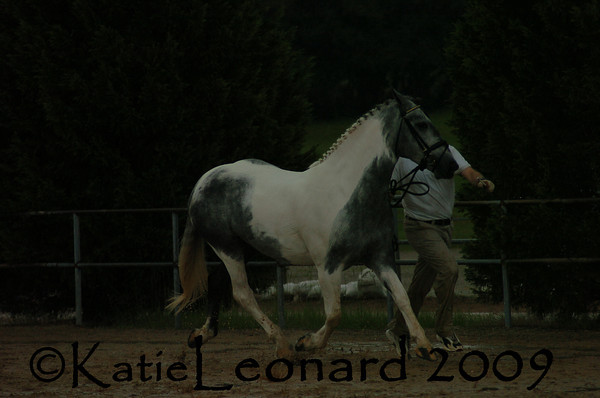 KAL_4802