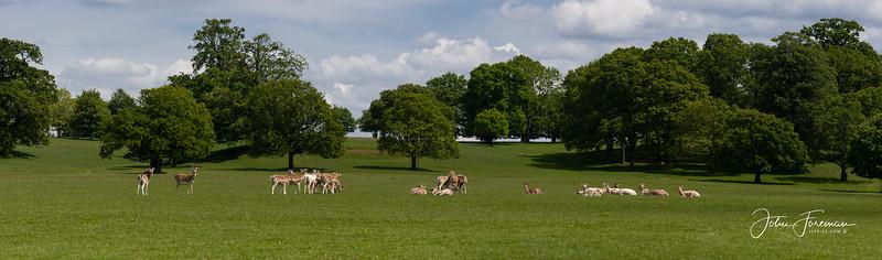Woburn Park