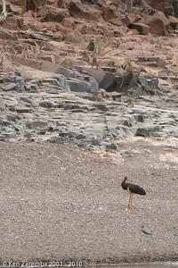 20070925-OurBotswanaMashatu-170-2