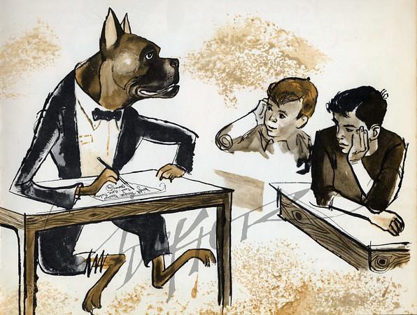 Animals Illustrations by Irv Docktor