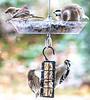 Birds at feeder & suet box - 11-12-2018_W7A0176-0176 - 72 ppi