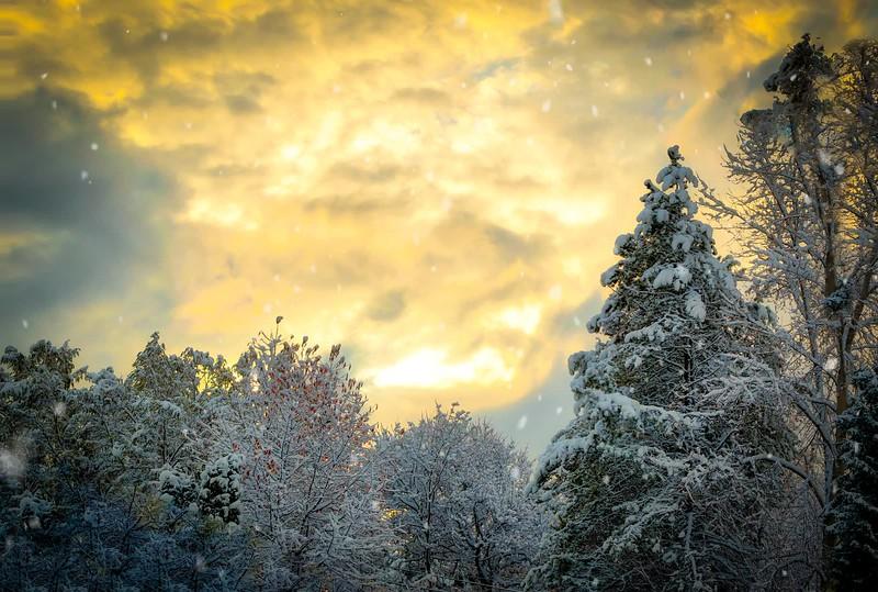 Snow at Sunrise