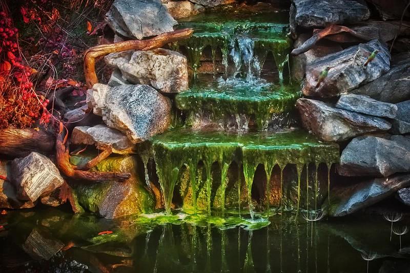 Pond Falls