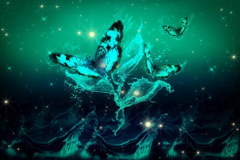 magicbutterflies