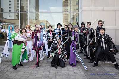 Animazement 2017 Sword Art Online