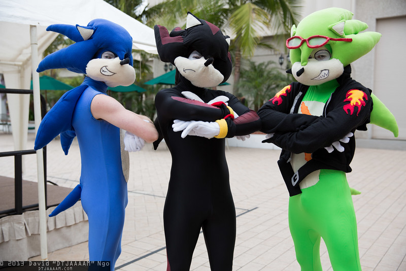 Sonic the Hedgehog, Shadow, and Manic