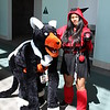 Houndoom and Team Magma