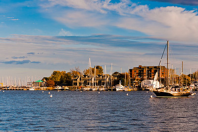 Boats in the harbor of Annapolis, Maryland.
