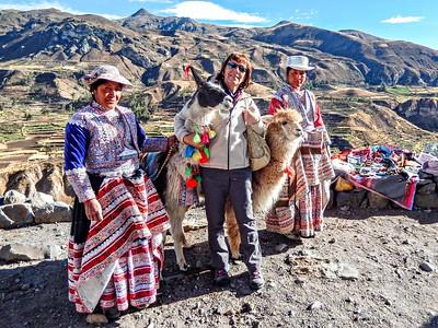 Cuddling Lamas