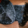 Blue chenille & Fun Fur for KTU 2/2005