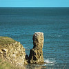 Coastal Walk Lockdown III , Souter to Whitburn