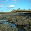 A Spring walk along the coast at Craster and Dunstanburgh