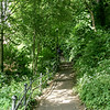 Durham City walk in June 2021
