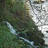 Ingleton Falls nr Carnforth