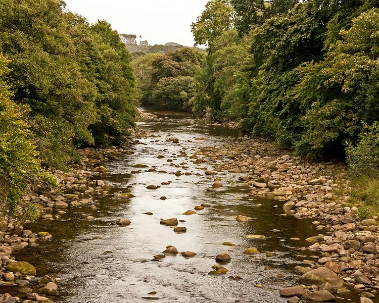 National Trust Allen Banks nr Haydon Bridge