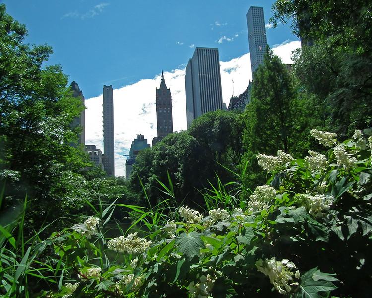 New York Day #4
