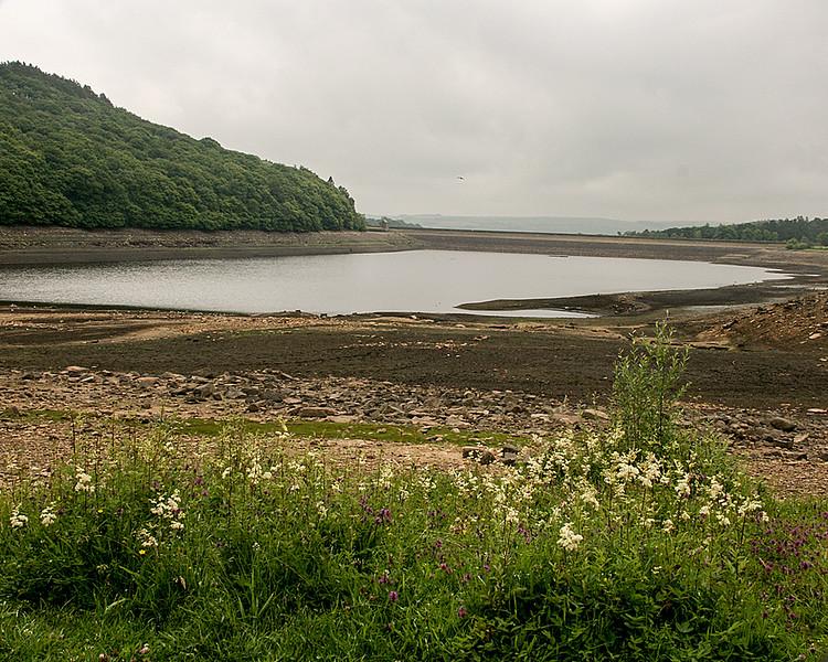 Tunstall Reservoir, nr. Wolshingham, Co. Durham