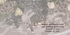 Revised Cover Ledet Premium Paper 10x10 Album - Cover for 10 spreads-20 sides