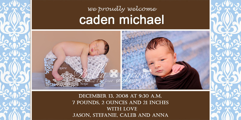 4x8 Caden