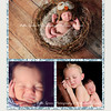 Simply Liam: 5x7 double sided card (back side). See previous image for the front side of this card. All colors are customizable to the color scheme in your images.