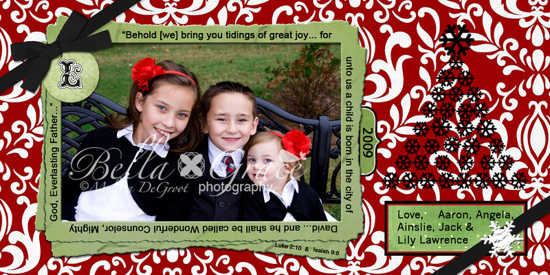 4x8 Red Damask with Black Accent. This version is for 1 picture. All text is customizable, or can be removed completely.