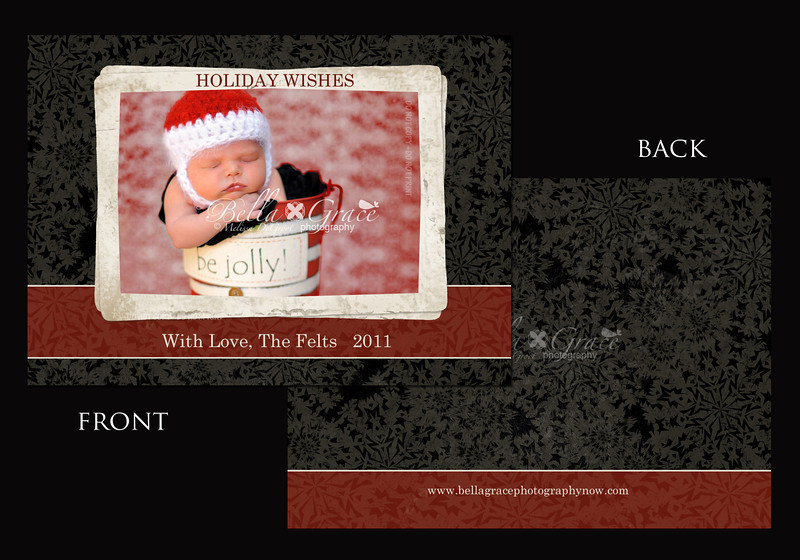 Rich & Lovely Holiday Wishes 5x7 (front and back shown)