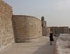 The Bahrain Fort (1)