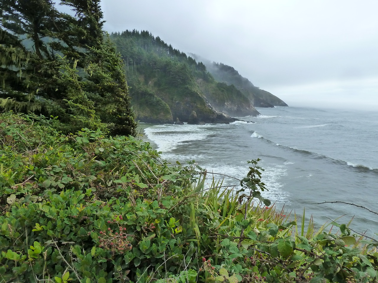 More Oregon Coast!