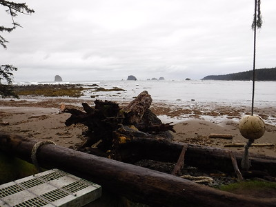 I loved the juxtaposition of the wild coast and the debris.  This is real life.