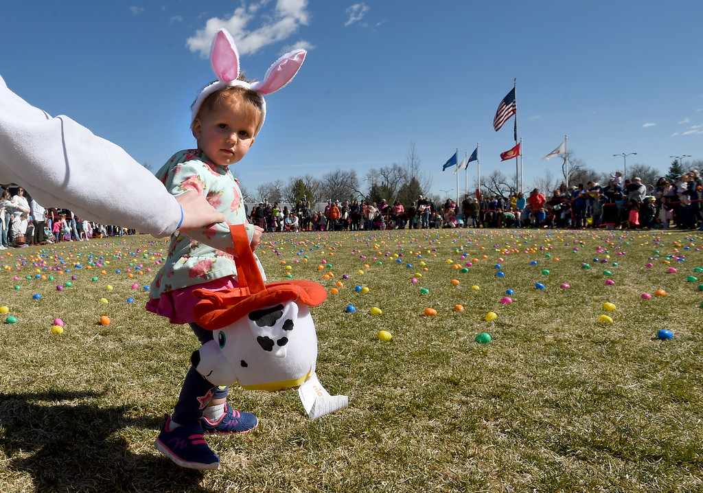 . Olivia Vigil, 2, had to be pulled back for starting too early during the 8th Annual White Fields Community Church Easter Egg Hunt at Roosevelt Park in Longmont on Saturday. Cliff Grassmick  Photographer  March 31, 2018