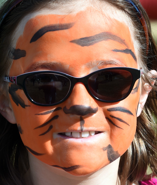 . Charlotte White has the perfect tiger face at the 8th Annual White Fields Community Church Easter Egg Hunt at Roosevelt Park in Longmont on Saturday. Cliff Grassmick  Photographer  March 31, 2018
