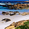 Beach near Pacific Grove
