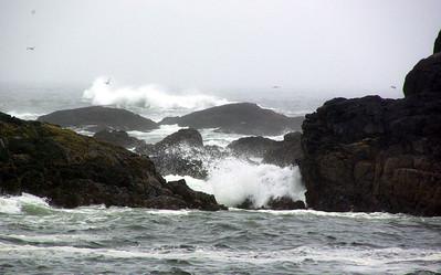 West Coast Fury