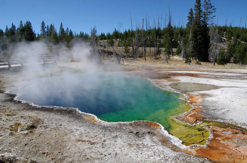 Yellowstone  -2012