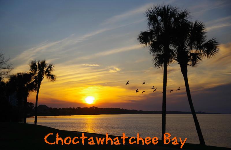 Choctawhatchee Bay 2017 Favorites