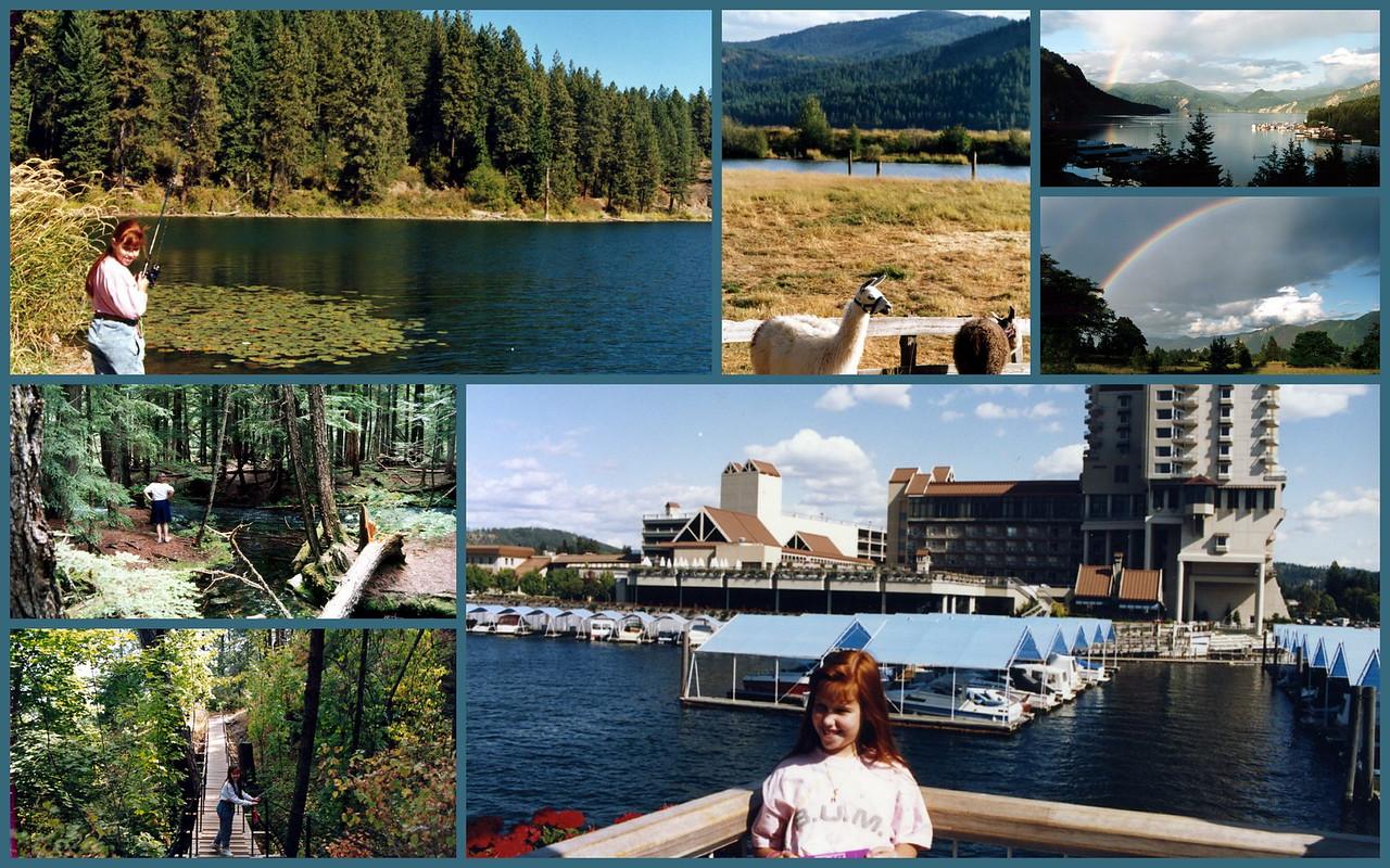 Idaho-1991, St Maries, Farragut, Coeur d'Alene, Ross Creek Cedars (MT) (1997)